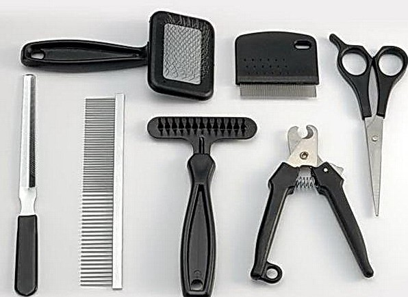 maine coon grooming tools